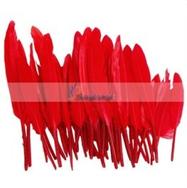 50pcs Home Decor Dark Red Goose Down Feather