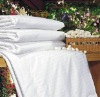 100% High Quality Mulberry Silk Quilt