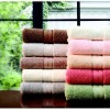 100% cotton embroidered bath Towel