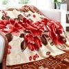 100% polyester plush throw blanket 200*240cm