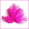 2011 Fashion wholesale rich beautiful ostrich feathers