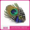 2012 HOT fantastic peacock feather headband