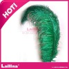 2012 new fashion ostrich feathers