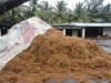 25kg bale Coconut fiber