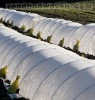 36M agricultural nonwoven