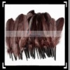 50pcs Home Decor Brown Duck Feather