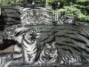 Black and White tiger Photo printed Bed sheet/Bedding sheet