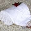 CN plain warm mulberry silk comforter
