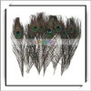Cheap! 10pcs Decoration Natural Peacock Feather