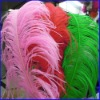 Colorfull Ostrich Feather Hair Extensions