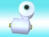 DTY- 300D/96F cationic yarn (SIM)