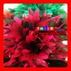 FREE SHIPPING FEDEX/DHL FACTORY OUTLETS 15-20CM QUALITY PRODUCTS FEATHERS