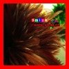 FREE SHIPPING FEDEX/DHL FACTORY OUTLETS 15-20CM QUALITY PRODUCTS grizzly feather