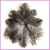 Fashion wholesale rich colored ostrich feathers