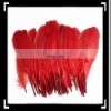 Fashionable!! 50pcs Home Decor Red Duck Feather