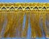 Golden Fringe Lace Trim