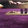 High-low Polyester Shaggy Carpet/Rug