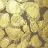 Hotsale gilding polyurethane coated nylon fabric
