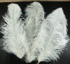 Ostrich feathers, real sotrich feather, decorative ostrich feather, wedding feathers, tail feathers, party ostrich feathers,