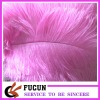 Pink Ostrich Feather for decoration