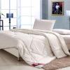 Plain Cotton Luxurious Applique Silk comforter