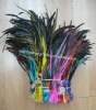 Rooster feather hairs extensions