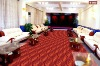 S202 Good quality Conference Room Carpet