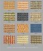 SK Natural Sisal Carpet tile