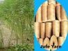 Sell : Jute Yarn