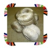 Want to sell Jute Yarn Ball : 1ply