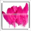 Wholesale! 50pcs Rose Red Duck Feather For Wedding