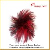 Wholesale Natural & Dyed Chicken Feather
