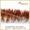 Wholesale Natural & Dyed Coque Saddle Feathers