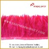 Wholesale Natural & Dyed Rooster Saddle Feathers