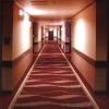 Woollen, Luxury Axminster Carpet for hotel project