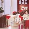 classic 100%cotton bedding set
