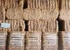 coconut bristle fiber