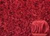 cozy shaggy carpet