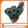 fashion peacock feather headbands