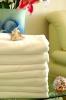 holiday inn quality hotel towel