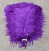 party decoration ostrich feathers