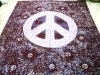 peace printed bedsheets