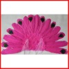 peacock Feather Wings - custom order your color