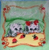 printed baby blankets/home textile