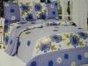 printed bedding set 3pcs/set