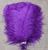 real purple ostrich feathers