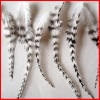 rooster feather hair extensions