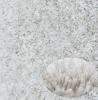 shaggy warm carpet&rug 2012