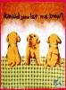 three funny funny dog baby blanket