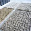 wall to wall carpet Domeino